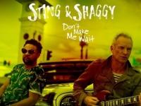 koncert - Sting & Shaggy